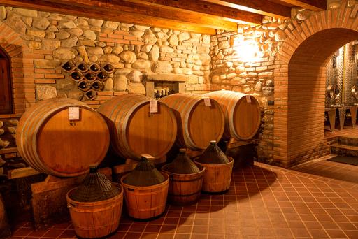 Terre del Vescovado - EVENTO: Andar per vigne - Magri Sereno