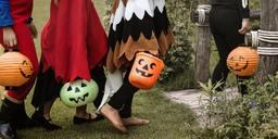 Terre del Vescovado - Apriti Biblioteca: Halloween Carobbio
