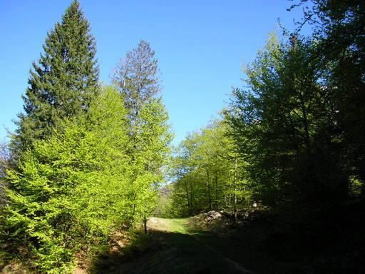 Itinerari Val Brembana - Cornalba