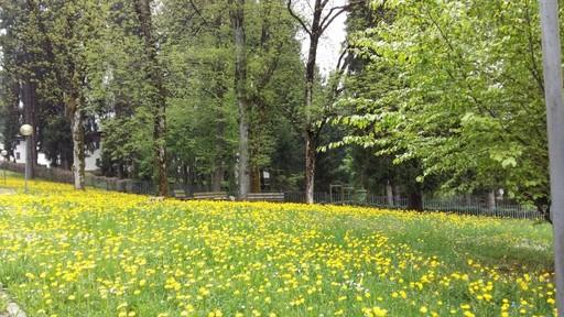 Punti d'interesse Val Brembana-immagine Parco generale Osio