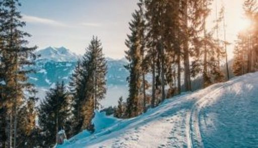 Visit Brembo: itinerari e sport in Val Brembana